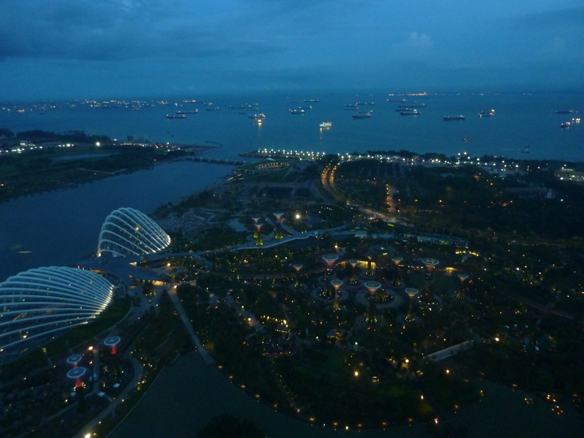 Garden by the Bay, view from Sky Park
