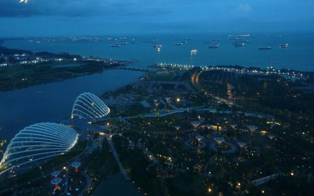 gardens by the bay at night 1